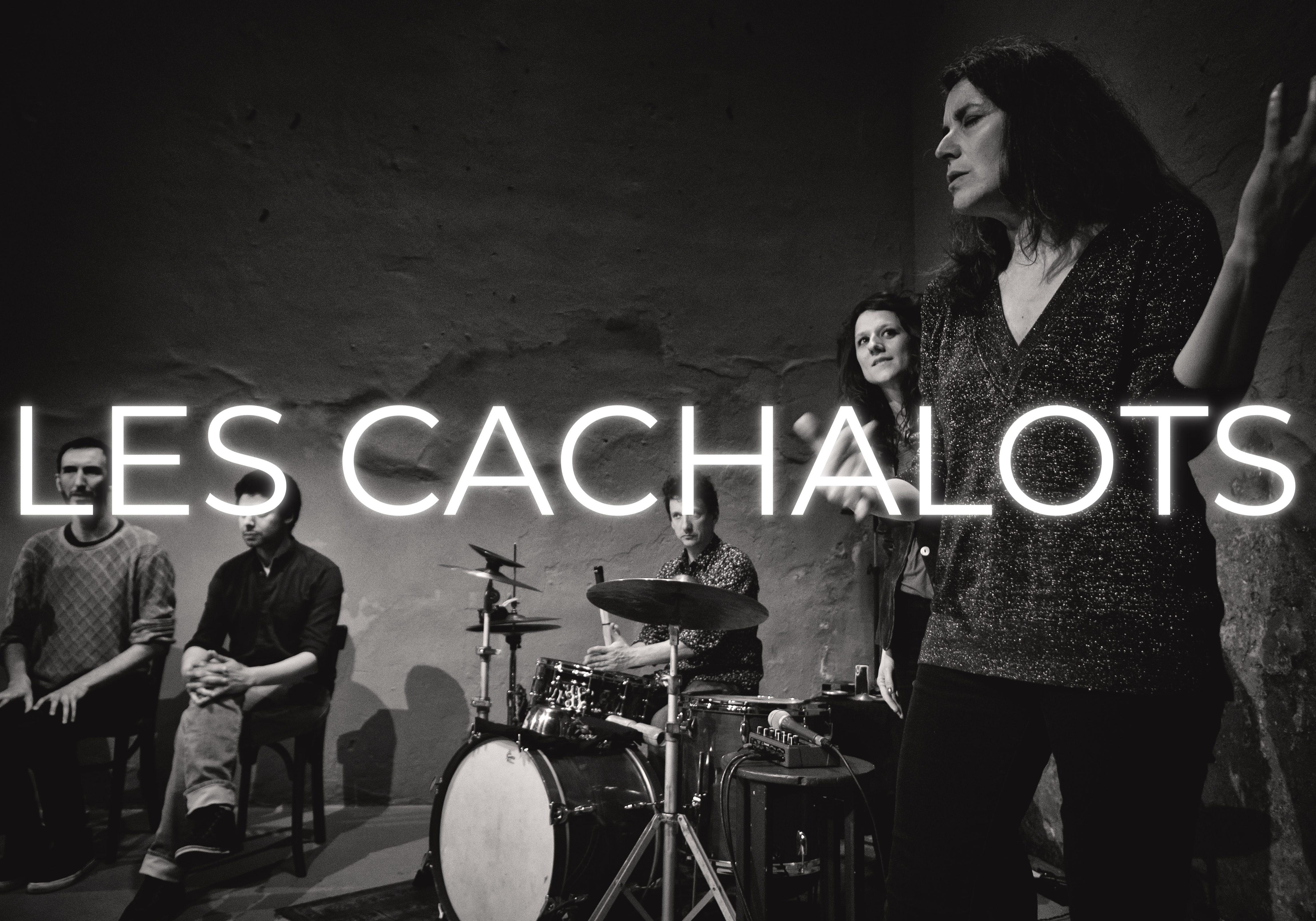 batch_Cachalot M1_
